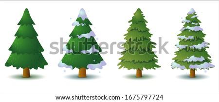 set of vector green coniferous