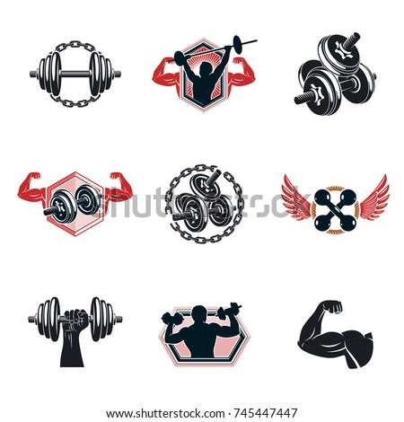Set of vector gym theme illustrations created with dumbbells, barbells and disc weights sport equipment. Bodybuilder body shape.