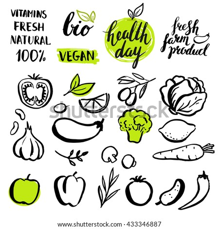 Set of vector handwritten elements with rough edges. Healthy farm food. Natural  bio product. Ink brush lettering. Hand drawn vegetables.