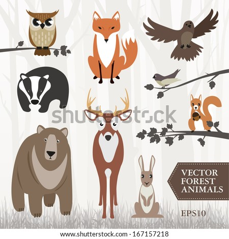 set of vector illustrated