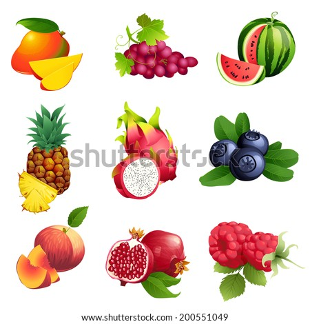 set of  vector illustration