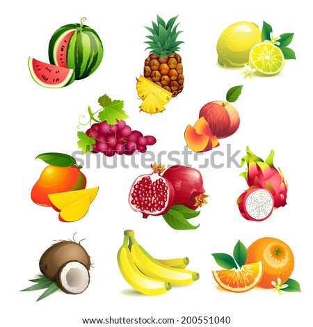 Set of Vector Illustration Icons tropical fruits with leaves and flowers