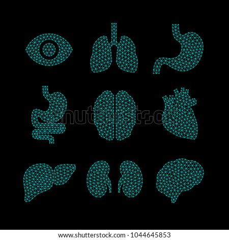 Set of vector illustrations of human organs.