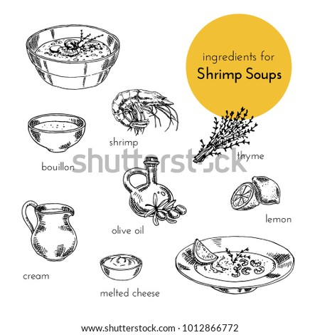 set of vector illustrations of ingredients for shrimp soups. hand drawn illustration. graphics vintage style. products for cooking