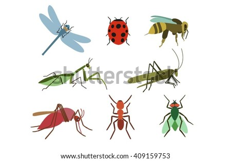 set of vector insects insects