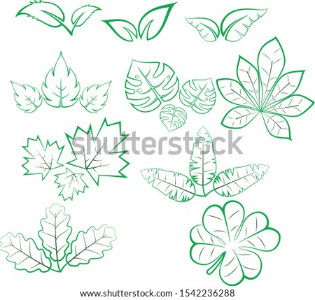 Set of 10 vector, one or two-color leaves. Maple leaves, oak leaves, four-leaf clover, etc.