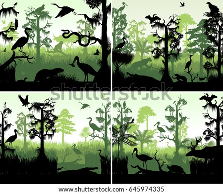 set of vector rainforest