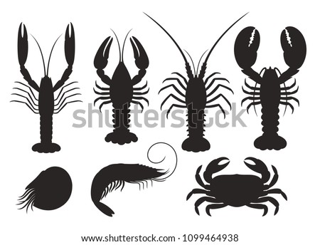 Set of vector silhouettes lobster, crab, spiny lobster, shrimp, nautilus, crayfish, langoustine, seafood      Photo stock ©