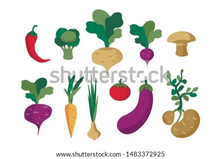 Set of vector vegetables, healthy food for vegans from the vegetable garden. #1483372925