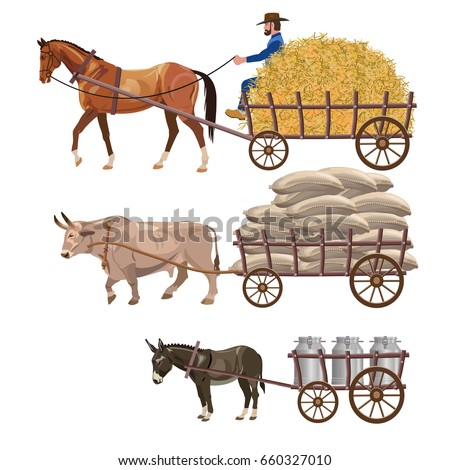 Set of vector vehicles with draft animals: horse, ox and donkey