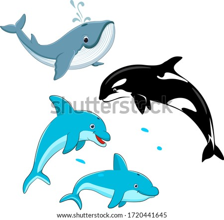 Set of vector whales and dolphins. Vector illustration of marine mammals, such as blue whale, dolphin, killer whale