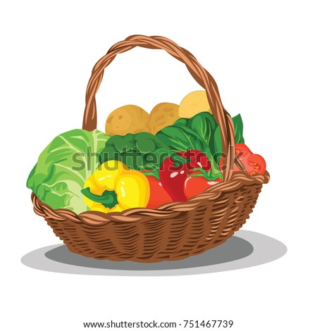 Set of Vegetable in Basket Fresh and Best Realistic Vector Illustration