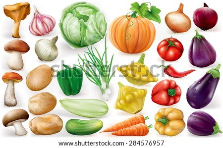 Set of vegetable on white background. Vector illustrations