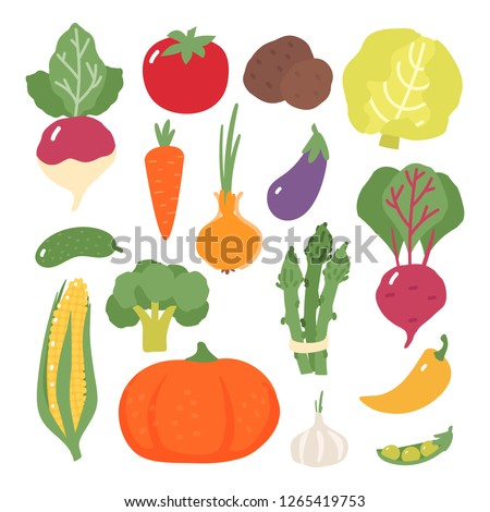 Set of vegetables. Cabbage. Pumpkin. Cucumber. Tomato. Corn. Potato. Garlic. Onion. Radish. Asparagus. Eggplant. Carrot #1265419753