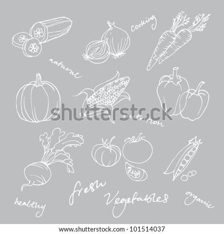 Set of Vegetables doodles vector