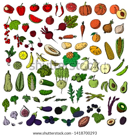 Set of vegetables, fruits and berries. Vector cartoon illustration. Isolated objects on a white background. Hand-drawn style. #1418700293