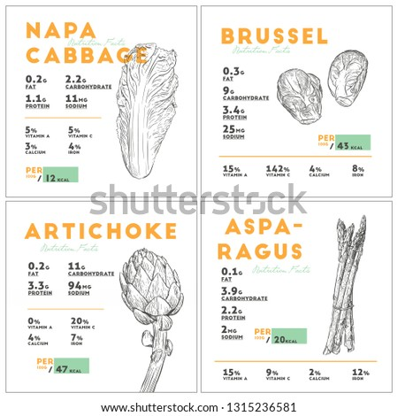 Set of vegetables nutition facts, napa cabbage, brussel spout, artichoke and asparagus. hand draw sketch vector.