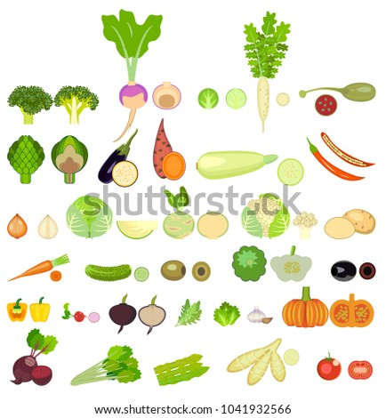 set of vegetables. thirty two  kinds of vegetables are whole and in a cut.Square of colored vegetables. Fresh food. Pumpkin, Cabbage, Blockley, kohlrabi, cauliflower, Brussels, beets, asparagus, corn #1041932566
