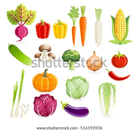 Set of vegetables. Vector illustrations.