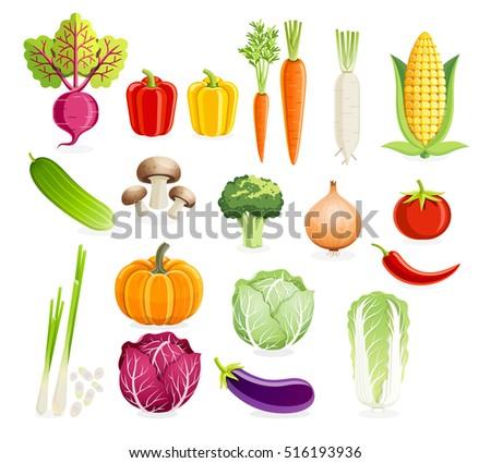 Set of vegetables. Vector illustrations.