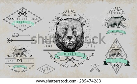 set of vintage  bear logo....