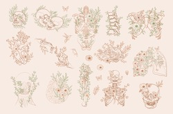 Set of Vintage Floral Anatomy elements in one line. Human skeleton and inner organs with flowers and leaves. Editable vector illustration.