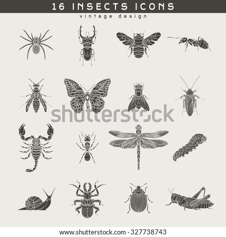 Set of vintage insects icons. Retro vector design  labels, badges, graphic element, emblem, logo, insignia, sign, identity, logotype, poster.