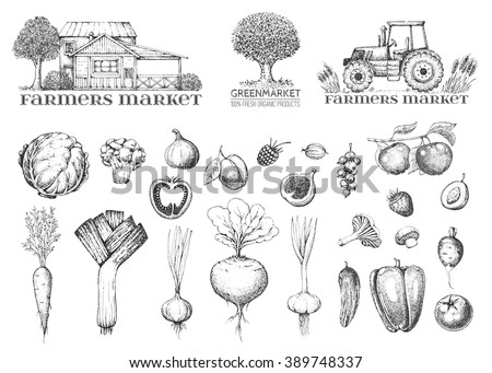 Set of vintage retro farm logo. Label and design elements: tree, tractor and house. Vegetables, fruit and berry. Fresh eco food. Hand drawn illustration of style engraving.