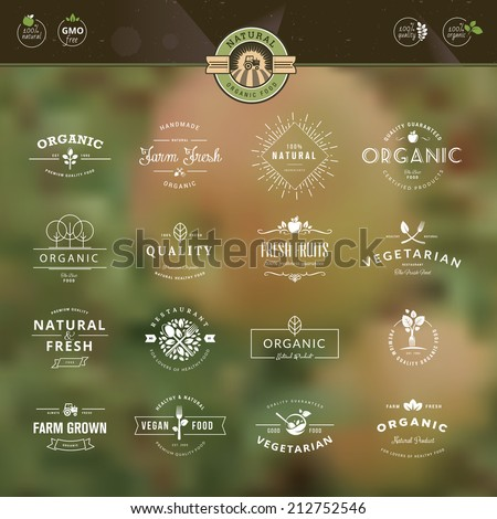 Set of vintage style elements for labels and badges for organic food and drink, on the nature background