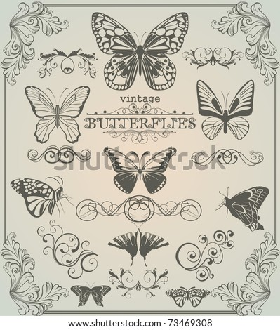 Set of vintage stylized butterflies and design elements