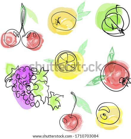 Set of watercolor fruits from lemon, pomegranate, grape and cherry. Elements for decorating cards, packs with fruit packaging products.Hand draw doodle style. Vector
