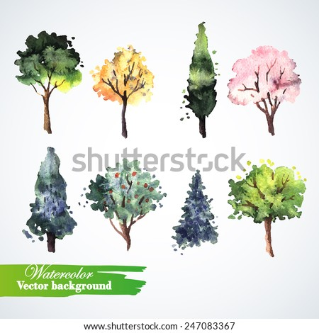 set of watercolor trees  hand