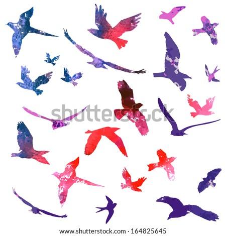 set of watercolors flying birds