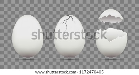 Set of white chicken eggs. Shell with cracks. Isolated on a transparent background. Stock vector template.