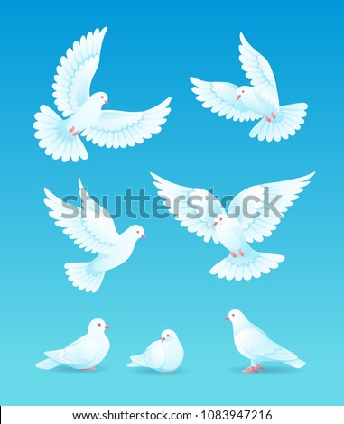 set of white pigeons on blue