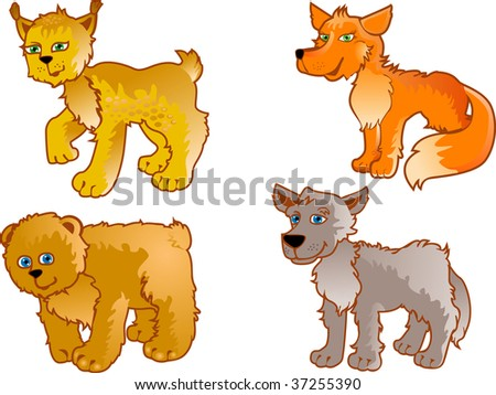 Set of wild animals Cubs of a wolf of a lynx of a bear of a fox (Separate layers)