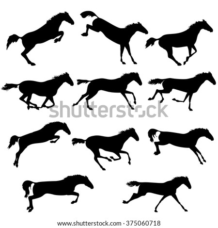 set of wild horses vector