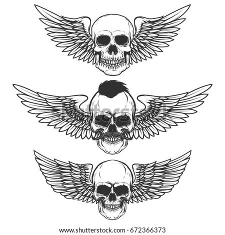 set of winged skulls isolated