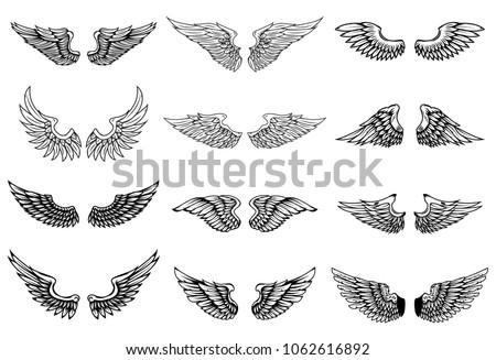 Set of wings illustrations isolated on white background. Design element for logo, label, emblem, sign. Vector illustration
