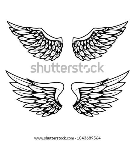 Set of wings isolated on white background. Design element for logo, label, emblem, sign. Vector illustration