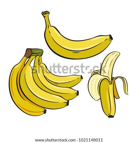 Set of Yellow Bananas. Vector color image