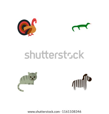 set of zoology icons flat style
