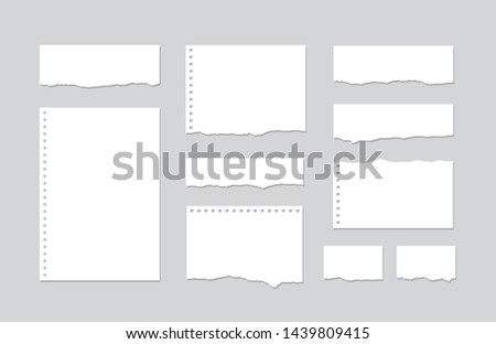 Set pieces of torn white lined notebook paper on gray background. Paper different shapes scraps - stock vector.