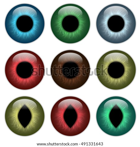 set pupil  contact lenses