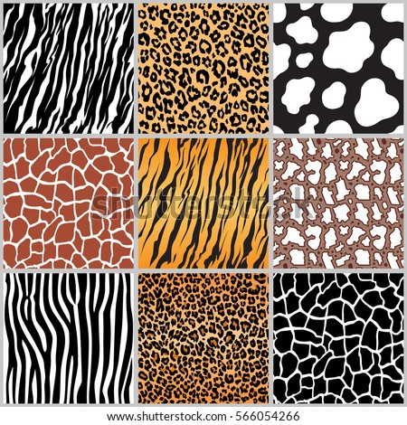 set safari jungle animal fur