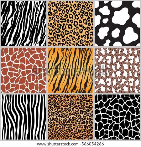 Stock Photo set safari jungle animal fur stripe animals bengal tiger giraffe zebra cow snake texture pattern seamless repeating white black orange brown