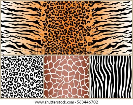 giraffe skin pattern design background download free vector art
