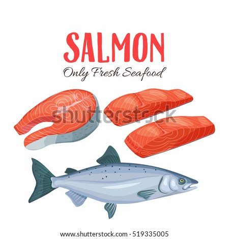 set salmon vector illustration