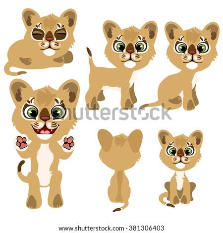 set small cougars wild animals