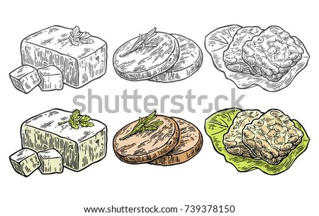 Set Vegan and Vegetarian food. Tofu, Seitan, Tempeh. Vector black and color vintage engraving illustration isolated on white background